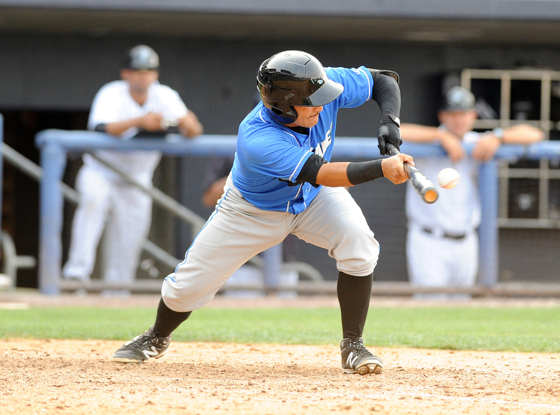 Oscar Sanay, Hudson Valley Renegades