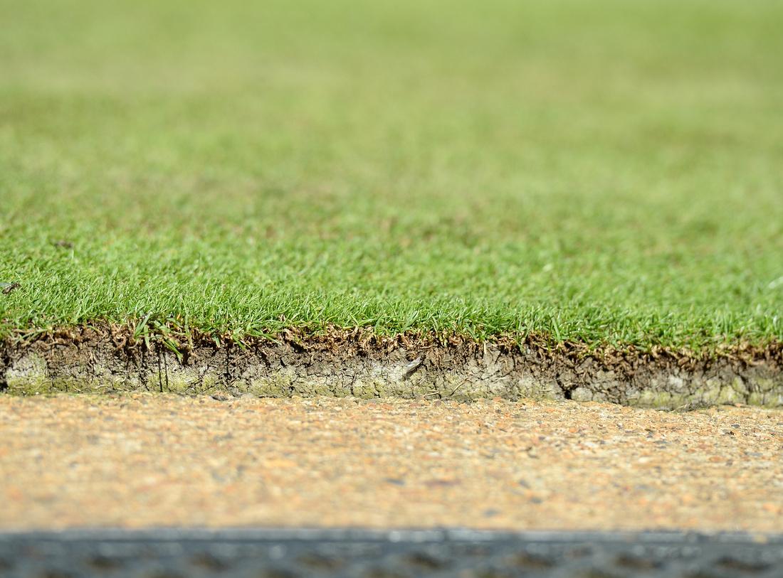 Wimbledon 2017 Day 3, Donna Vekic